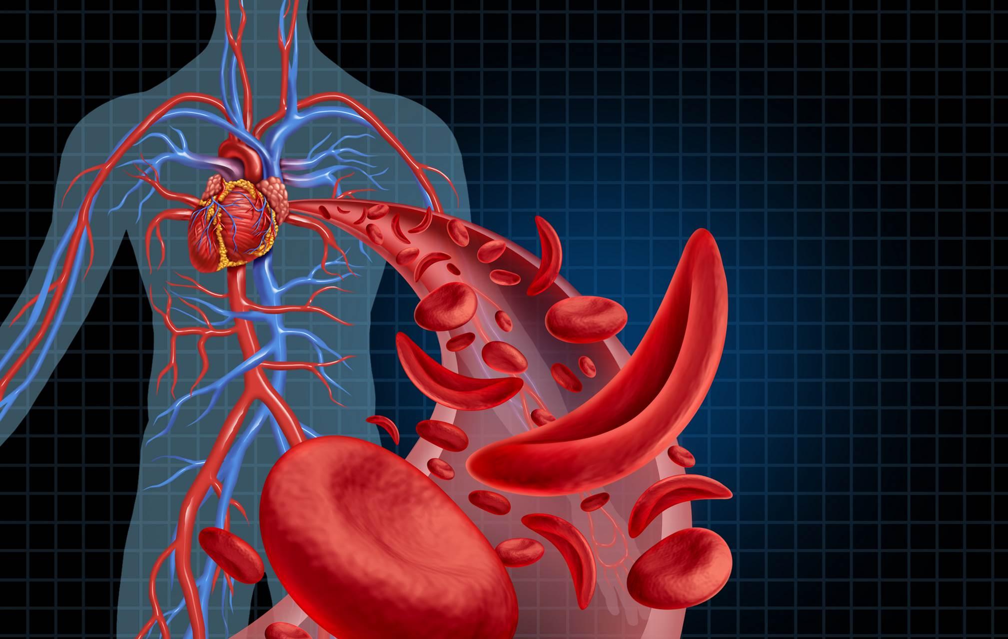 Wie Kompression den Blutkreislauf unterstützen kann