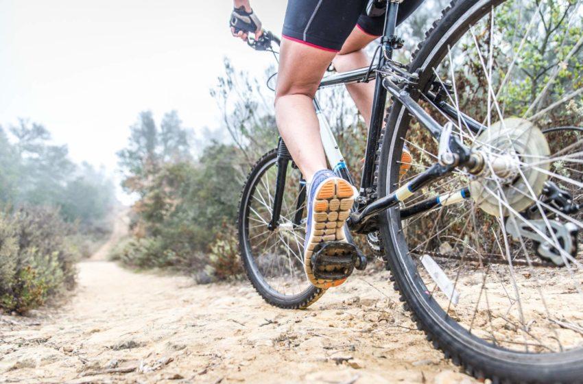 Fitnessprogramm Fahrradfahren