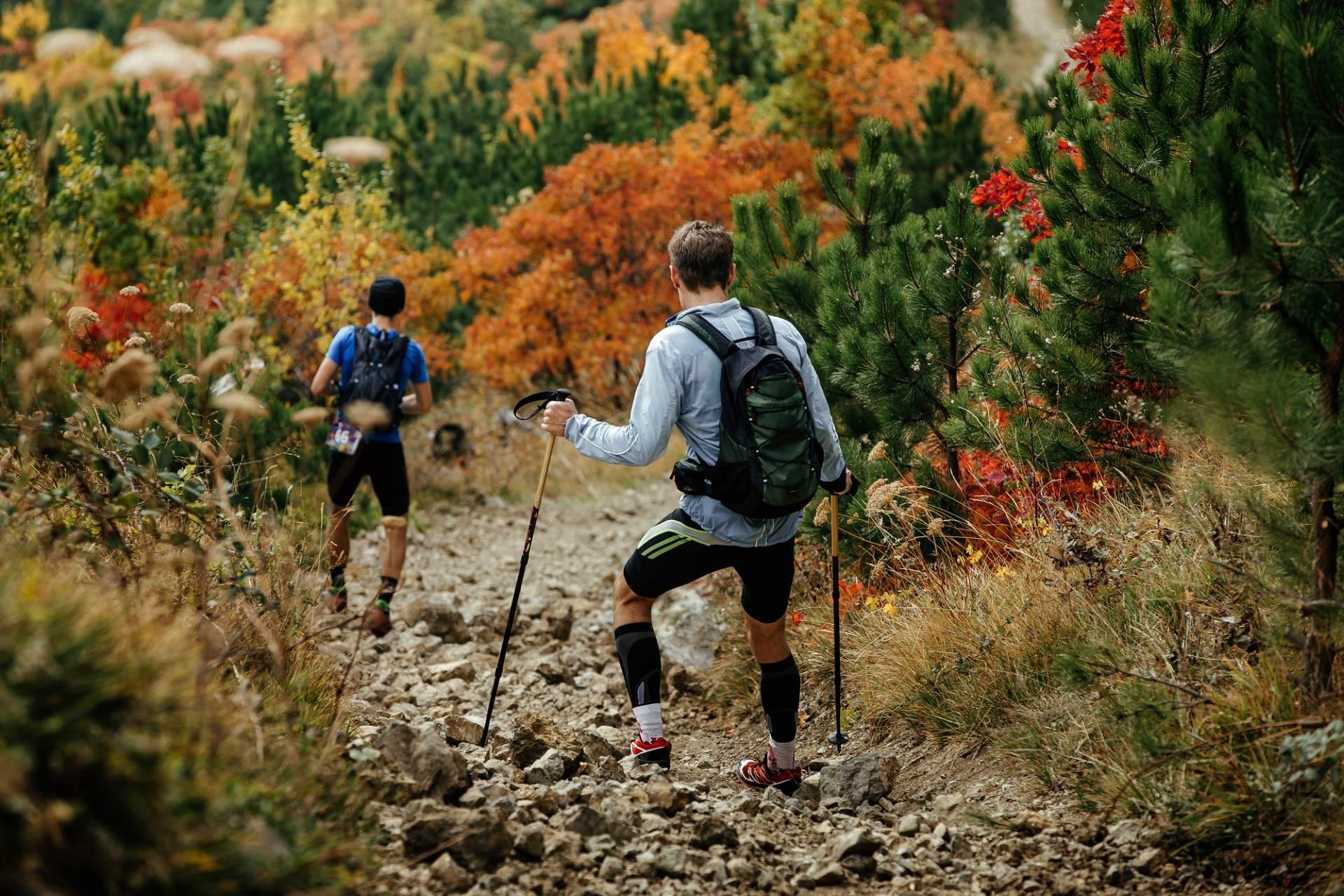 Die richtigen Wandersocken – Unerlässliches Equipment für deine nächste Trekkingtour