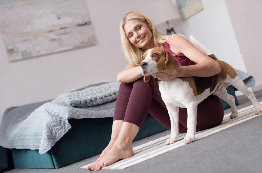 Yoga mit Tieren süß und sportlich
