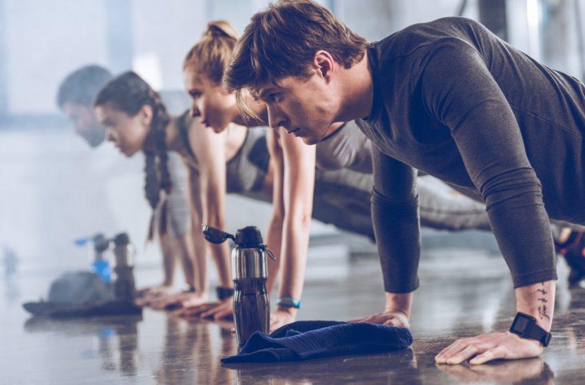 Trainings- und Belastungsbereiche